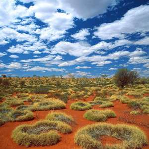 Пустыня, Австралия