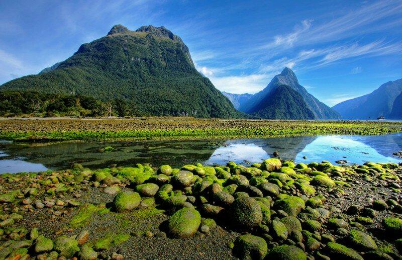 Новая Зеландия. Интересные факты
