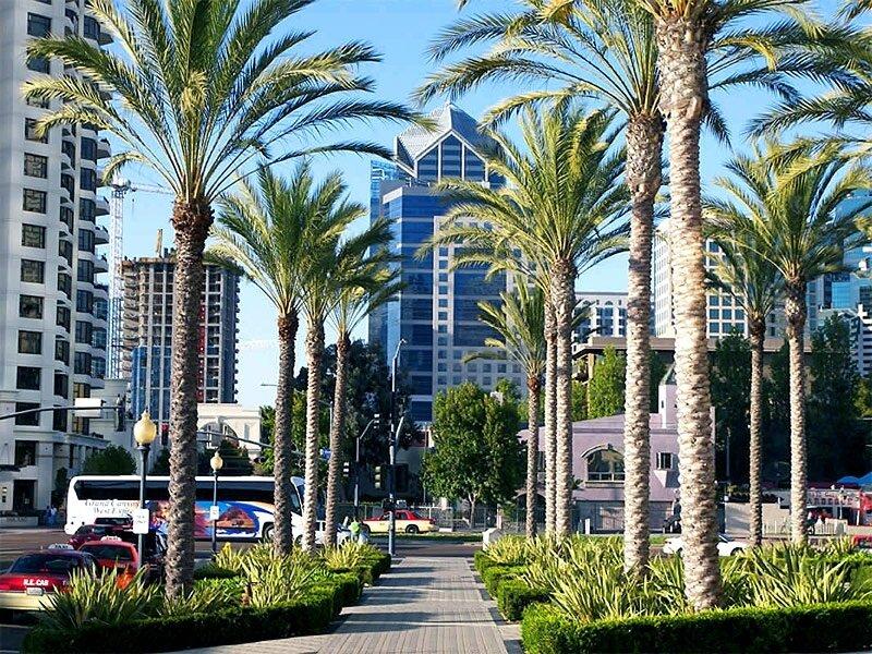 Отдых в Сан Диего (San Diego), Калифорния