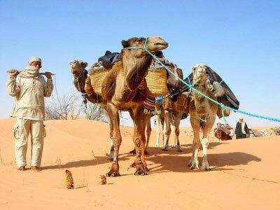 Пески Туниса